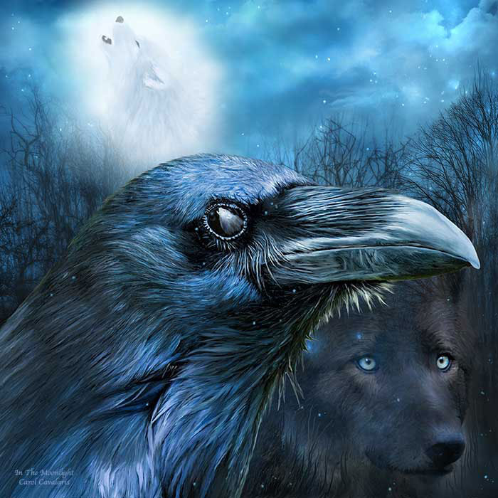 Raven And Wolf In The Moonlight