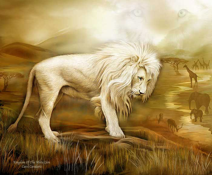 Kingdom Of The White Lion