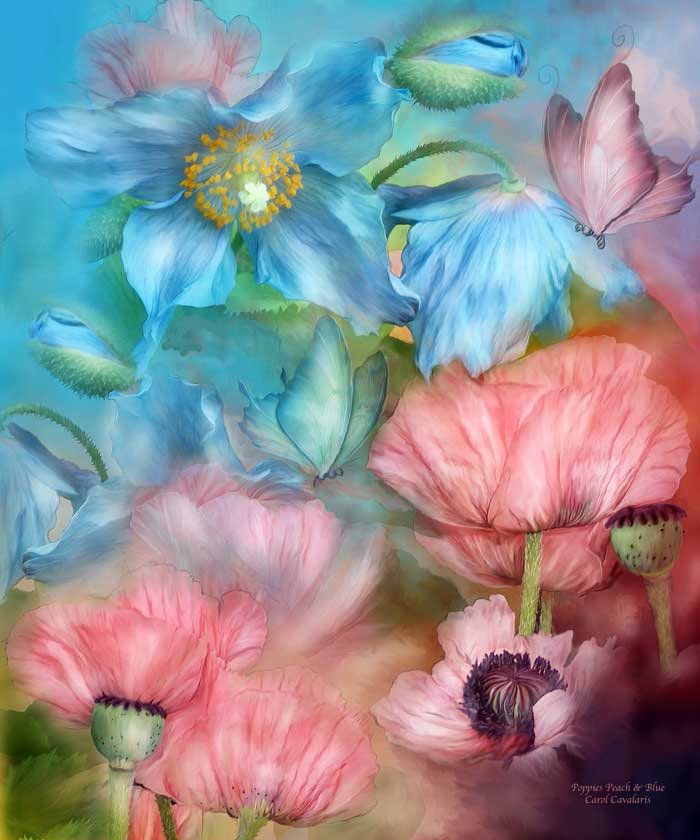 Poppies Peach And Blue