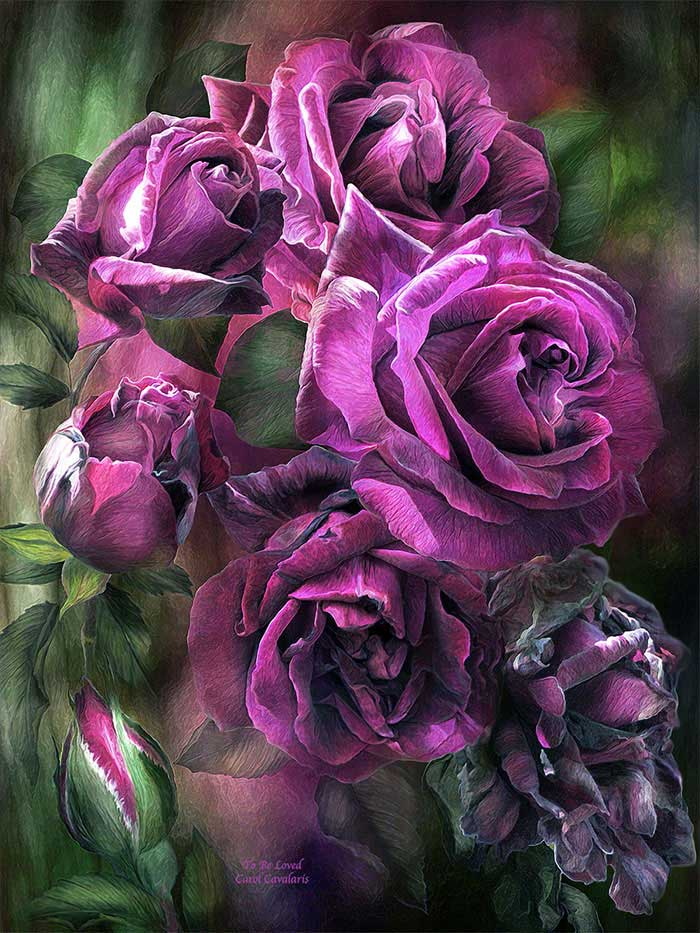 To Be Loved Purple Rose