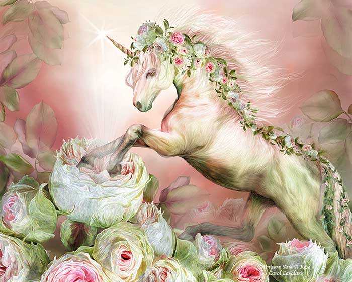 Unicorn And A Rose