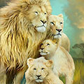 White Lion Family Unity