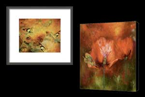 Giclee And Framed Art Prints